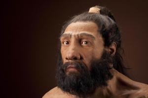 Artisitic representation of Homo neanderthalis. Source: Google creative commons